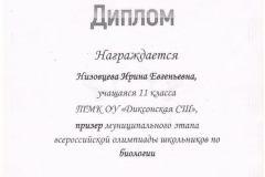 Диплом-Низовцева-Ирина