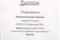 Диплом-Филатова-Света